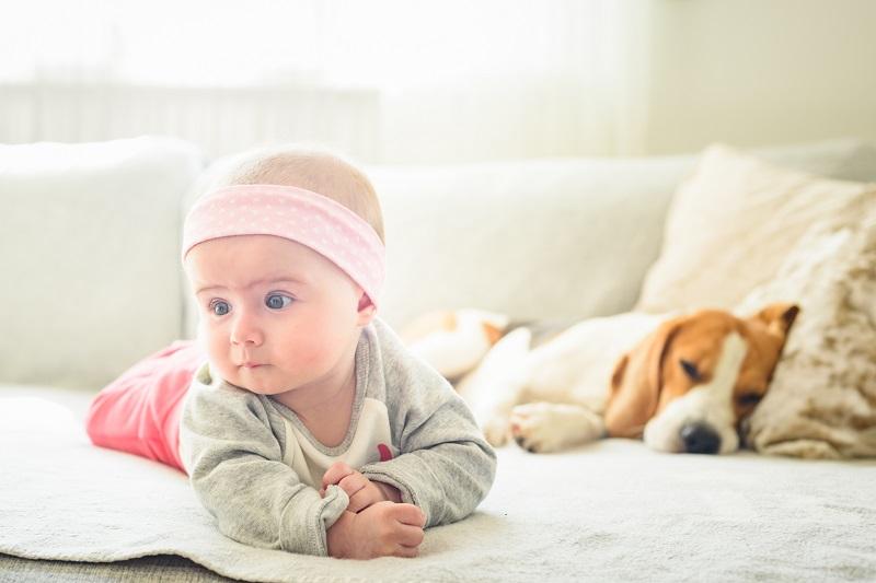 Jak ubierać niemowlaka w domu, jak na spacer?